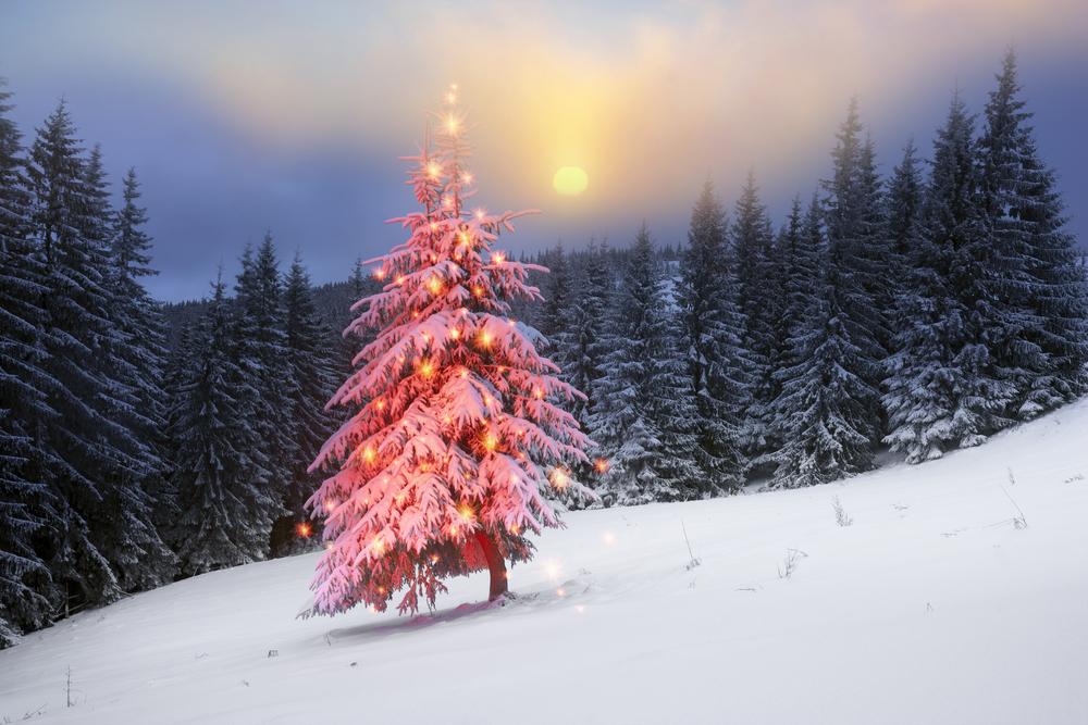 Weihnachten für Körper Geist und Seele